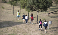 Copia di DSC 3934 - nordic walking